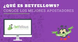 betfellow